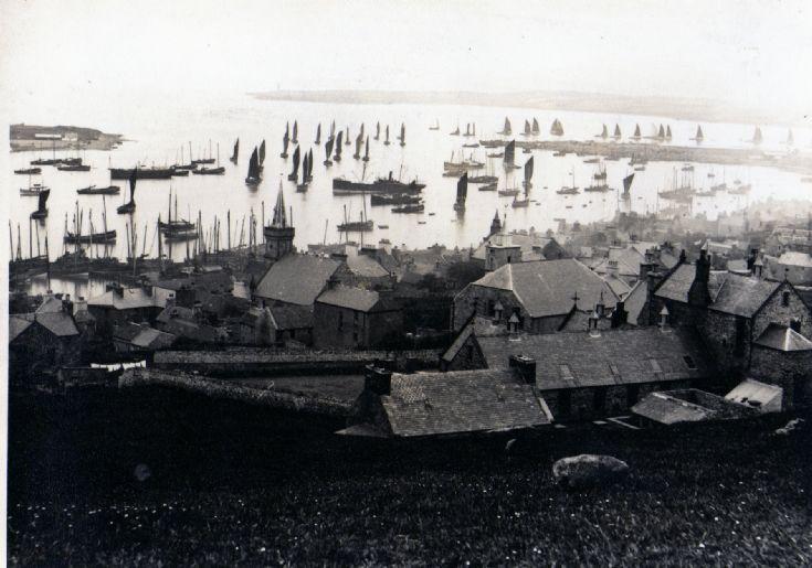Herring Fleet - Stromness Harbour