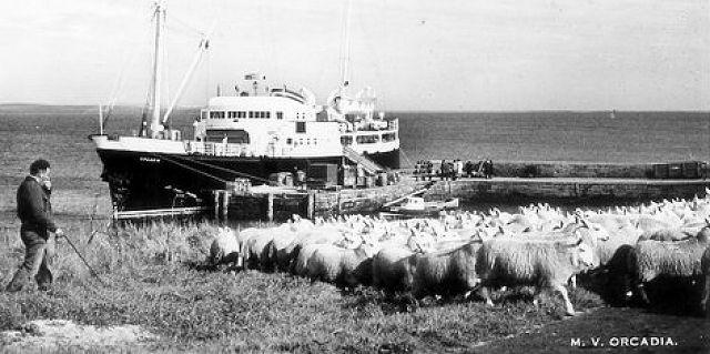 Orcadia at Eday pier