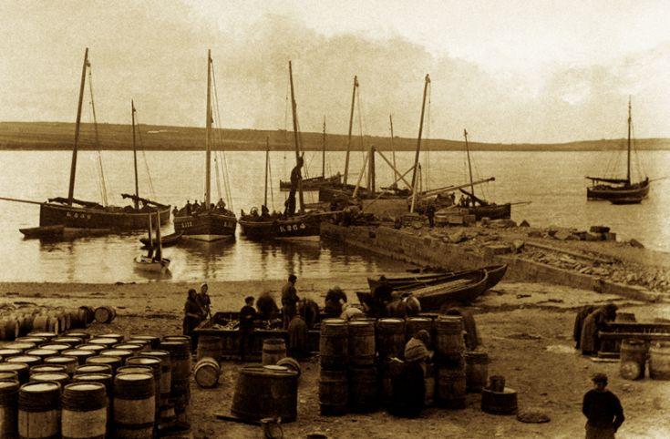 Herring Boats