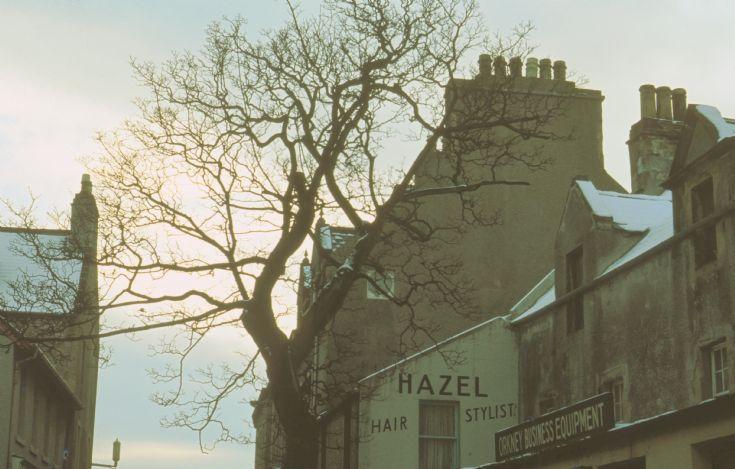 Kirkwall Hazel Hair Stylist
