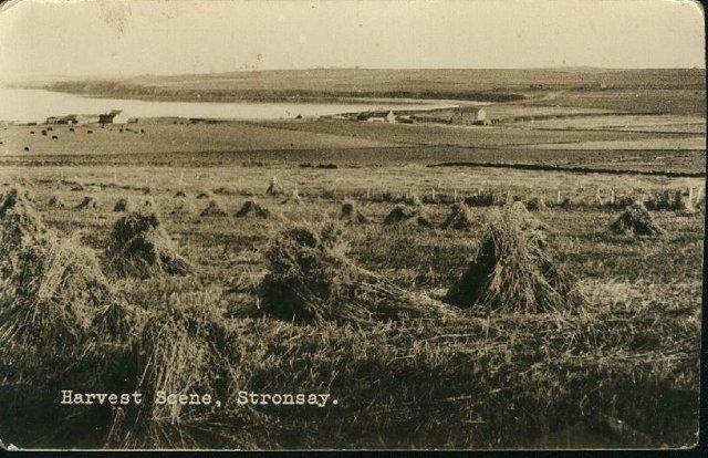 Harvest Scene, Stronsay
