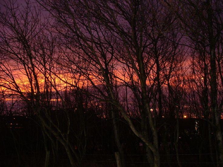 Morning 23rd Dec