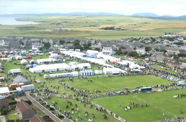 Detail of County Show from a kite