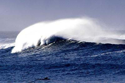 Skaill Surfer