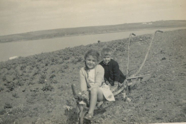 Riding a plough on Lookout Burray
