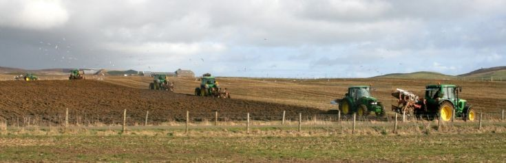 Infestation of tractors