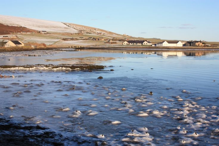 Frozen ice on shore at Firth