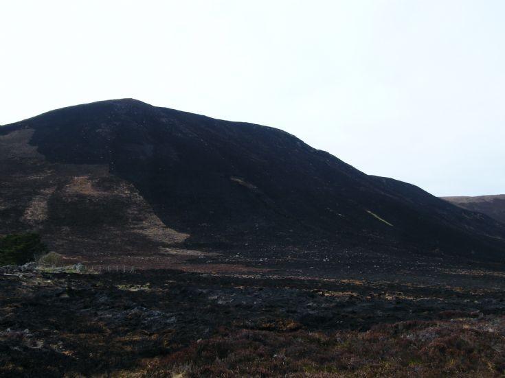 Heath fire in Hoy 3