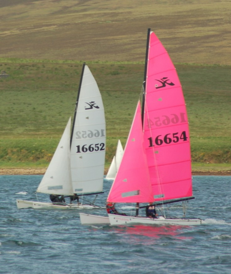 Cats racing at Longhope Regatta