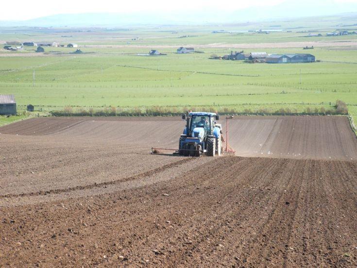 Barley sowing in Spring