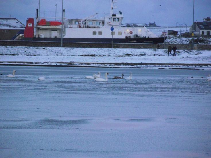 A frozen look across the Peedie Sea