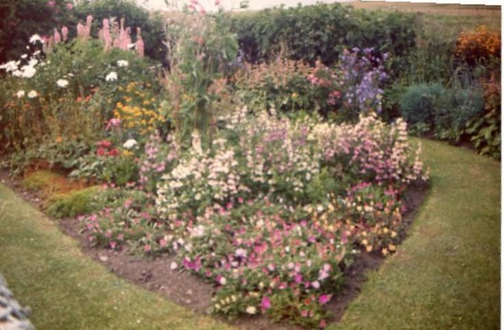 'Indoor' garden in Cava