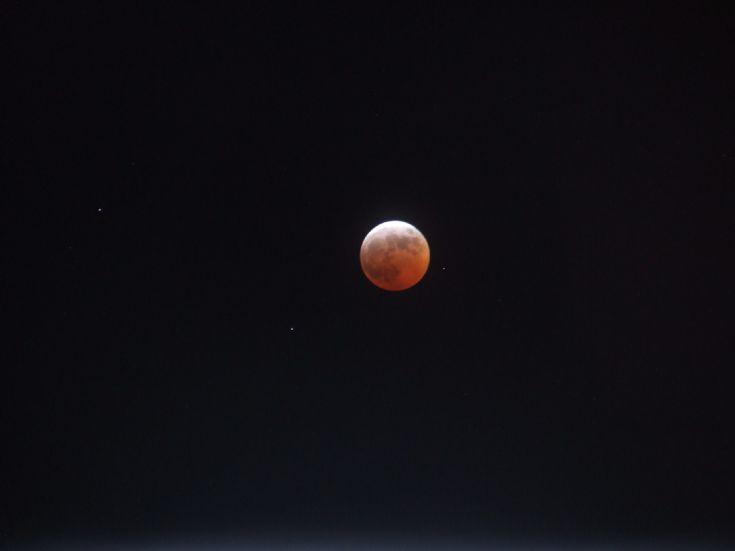 Bonny moon