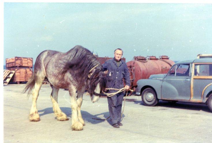 Jock O Brough's horses