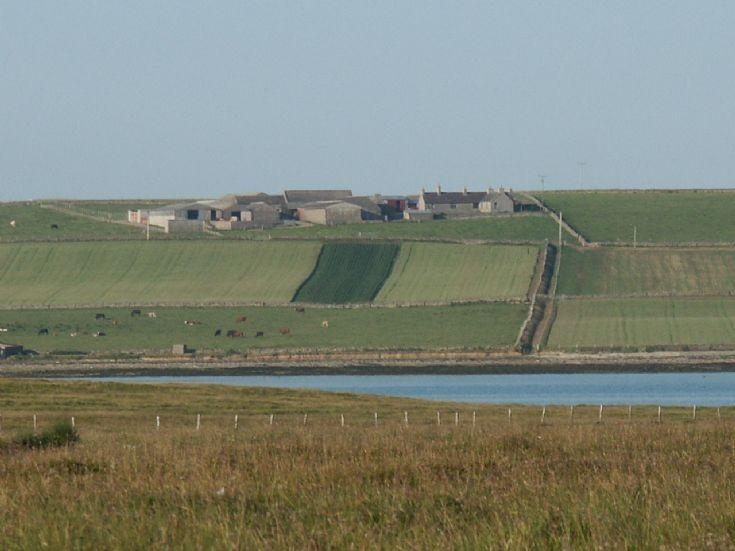 Midgarth Farm looking from Linga Holm