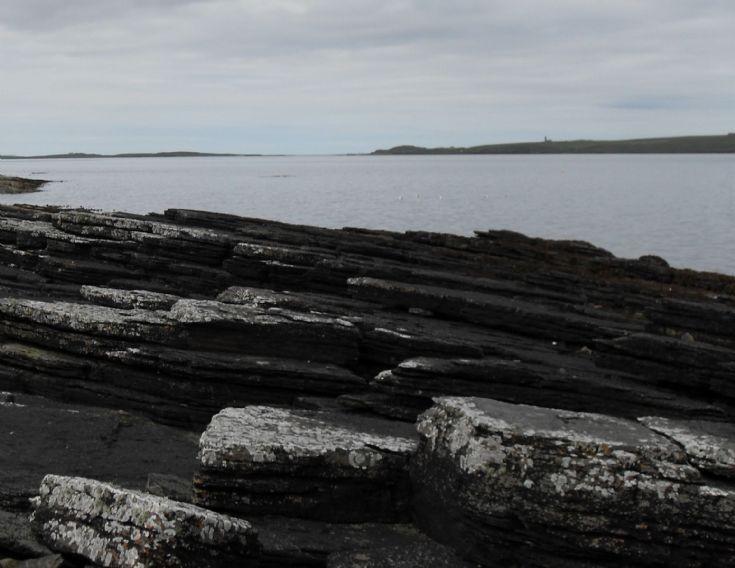 Wyre shoreline