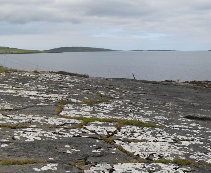 Wyre shore