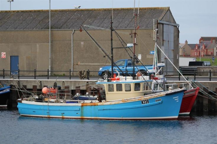 K239 Hildona in Kirkwall Basin
