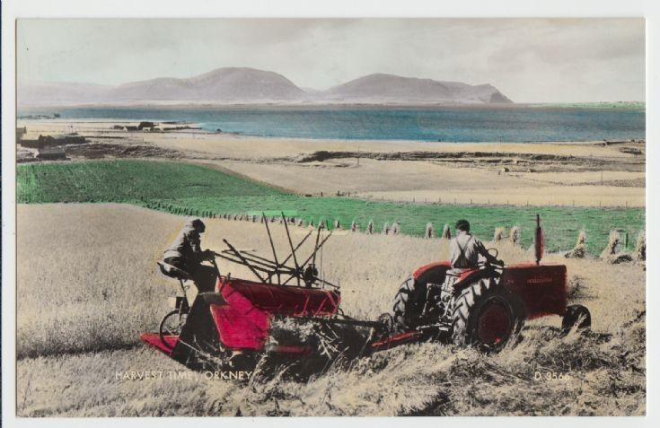 Harvest Time, Orkney postcard