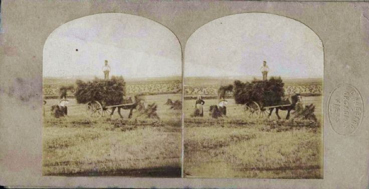 Hubbard stereoscopic view