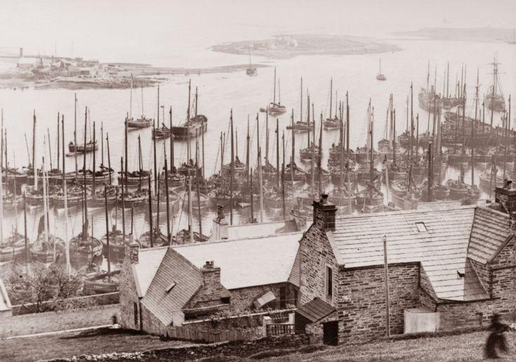 Stromness harbour with herring fleet. ca 1900