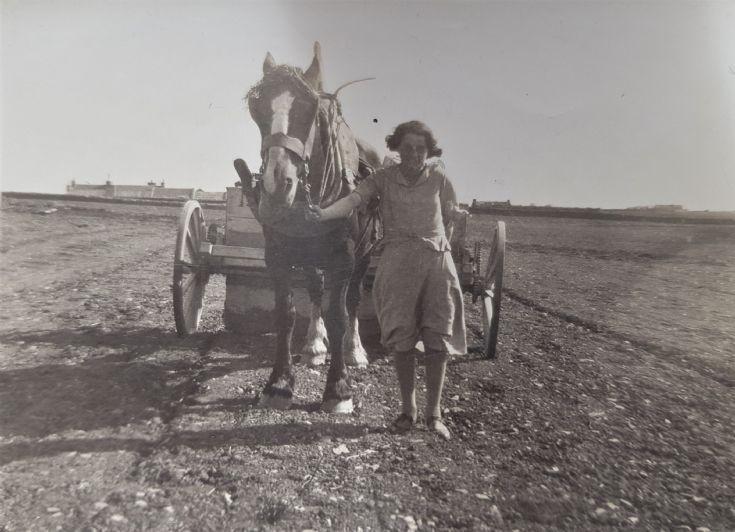Mystery horsewoman