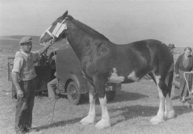 Dounby Agricultural Show 1956 (3/6)