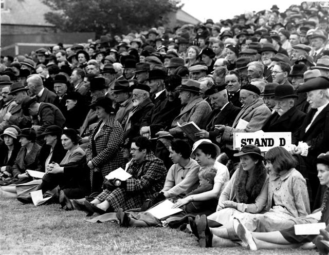Octocentenary Spectators