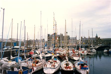 Yachts in the Basin