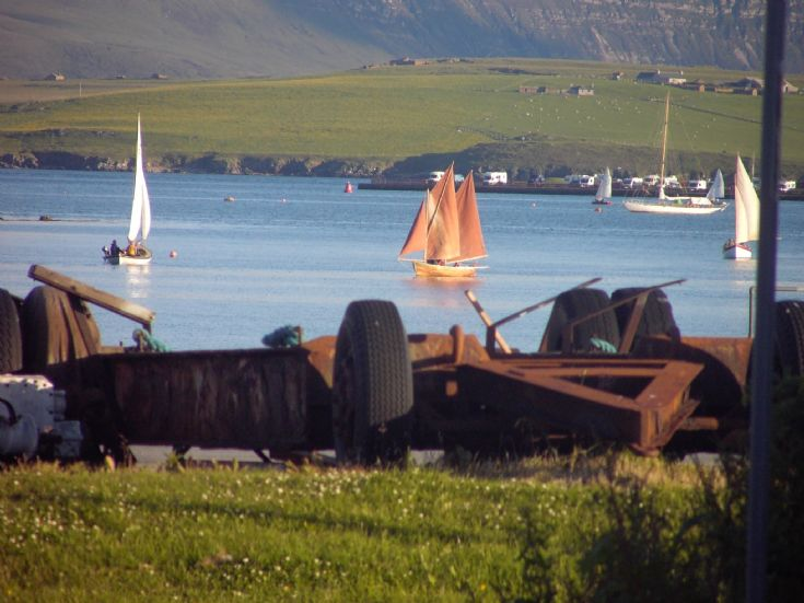Traditional Yoles in Stromness harbour
