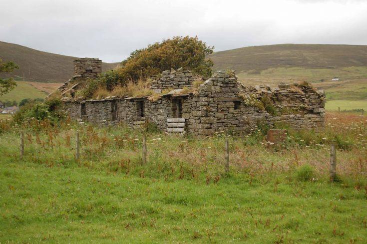 Gerwin - Original Wilson Farmhouse