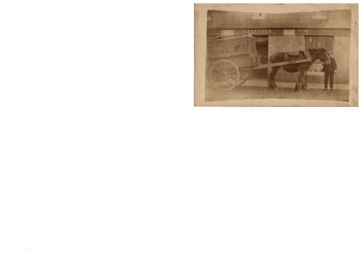 Stronsay Horsevan
