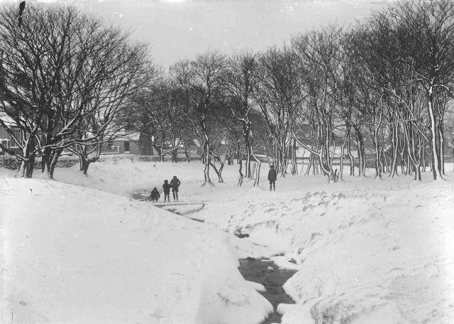 Willow Burn in Winter