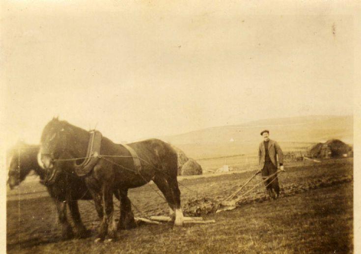 Grandad plooan, at the Burnhouse Longhope