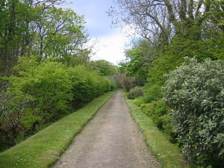 Lady's Walk, Balfour Castle gardens