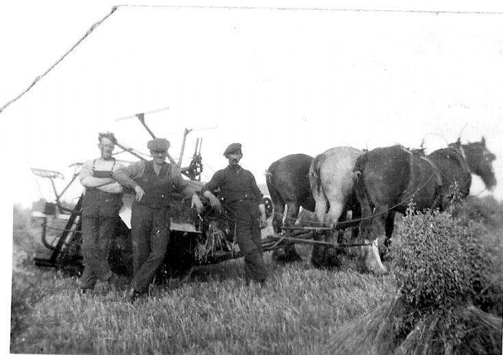 Harvest at Quoybanks