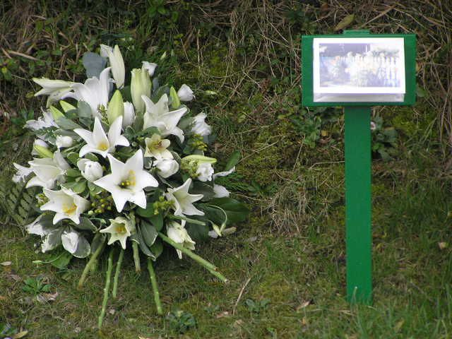 Remembering Walliwall plane crash