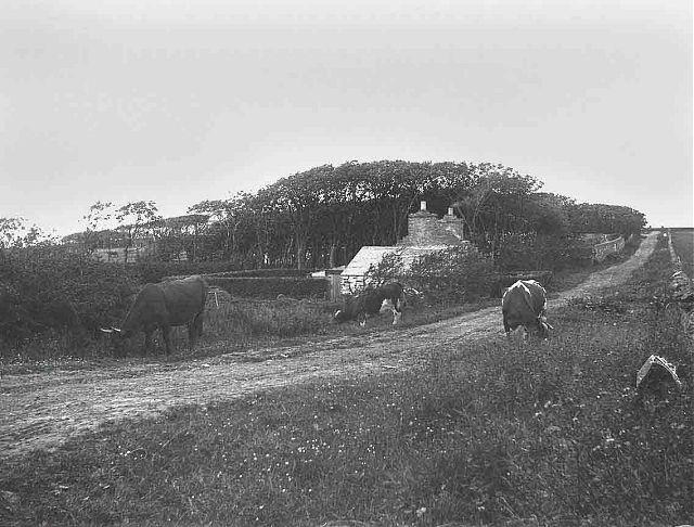 Papdale Cottage, Papdale Loan
