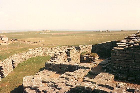 Cubbie Roo Castle, Wyre
