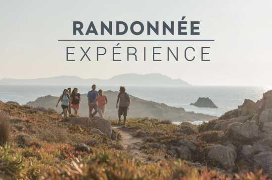 À quoi devrait ressembler une randonnée avec notre site, notre App ? ⛰