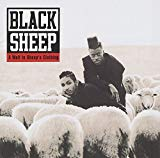 Black Sheep, A Wolf in Sheeps Clothing