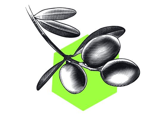 oliivinoksa
