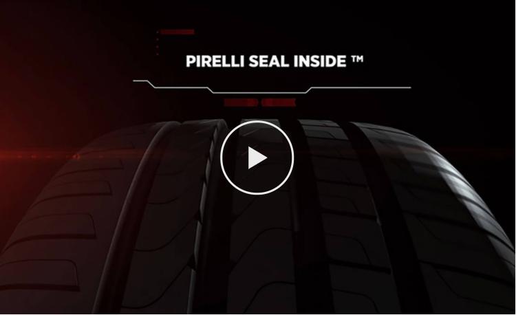 Seal Inside