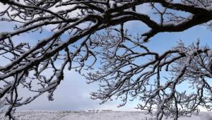 Neve e ghiaccio  prolungata l allerta meteo in provincia di Pisa 65118382776