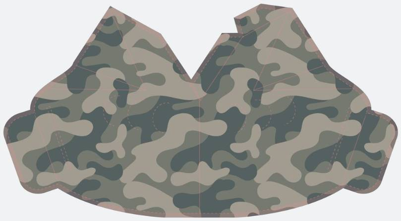Camouflage _ Pattern 2