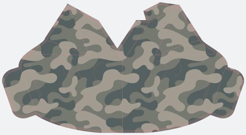Camouflage _ Pattern 2