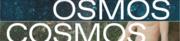 20190614 b osmos
