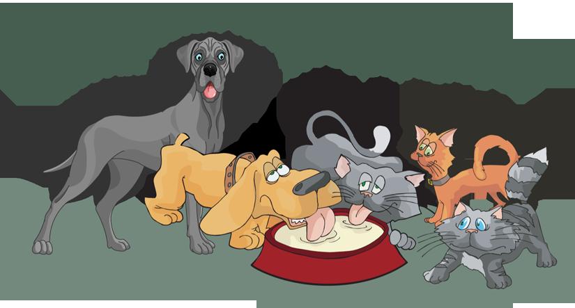 International homeless animal day
