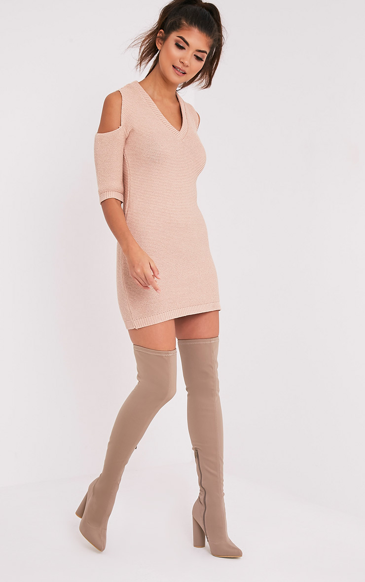 Natascha Nude Bodycon Cold Shoulder Dress