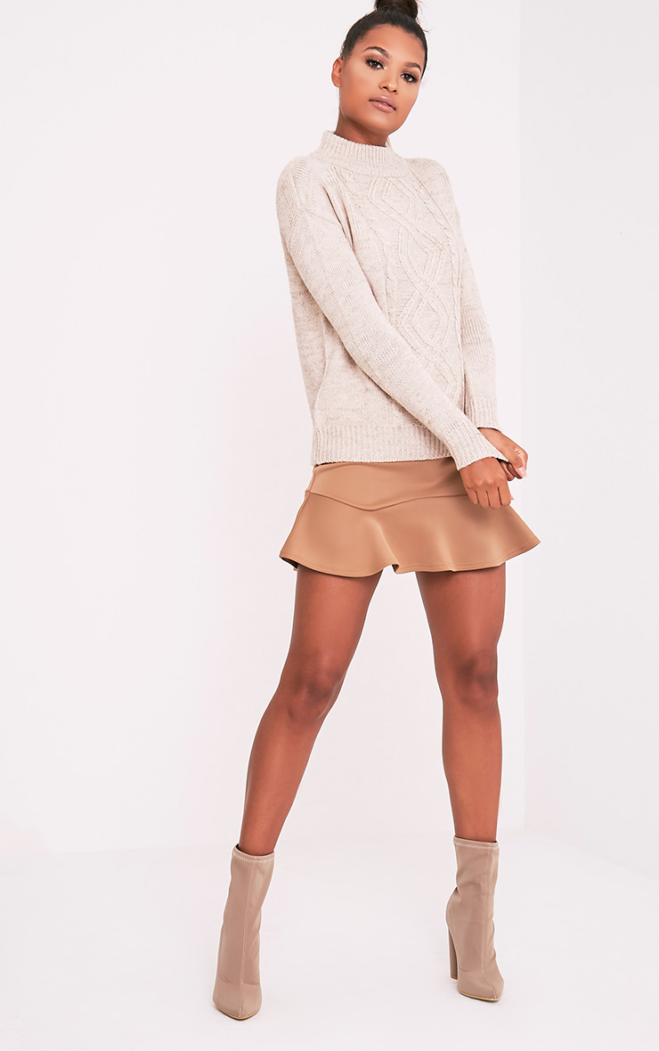 Jodeanne Taupe Cable Knit Detail Turtle Neck Jumper
